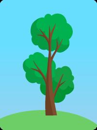 deforestation 1950