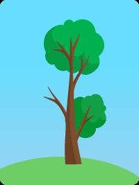 deforestation 2000