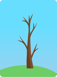 deforestation 2050